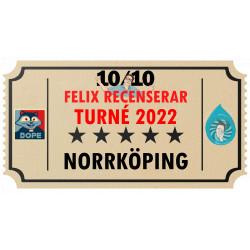 Biljett till Felix Recenserar i Norrköping!