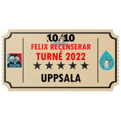 Biljett till Felix Recenserar i Uppsala!